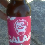 BrewDog IPA Is Dead – Galaxy 6,7%