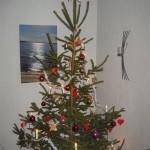 God Jul och God fortsättning önskar freddeboos.se!