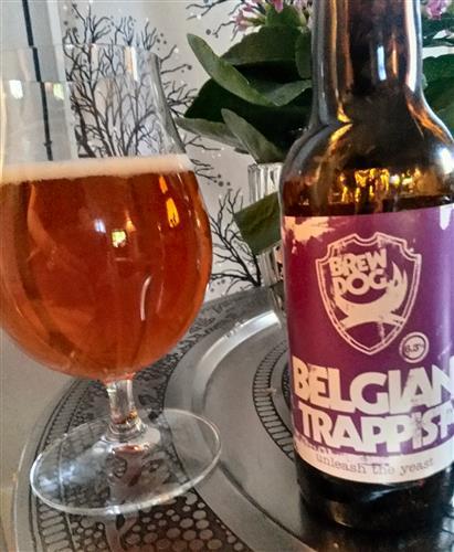 brewdog_belgiantrappist
