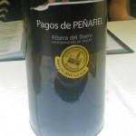 Pagos de Peñafiel (2009) 14,5%
