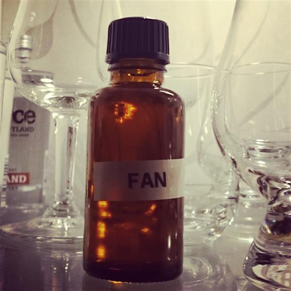 fan_sample