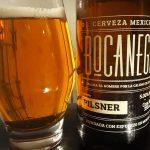 Cerveza Bocanegra Pilsner 5%